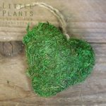 green preserved moss heart gift delivery