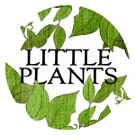 little plants gifts delivery gold coast holiday hours